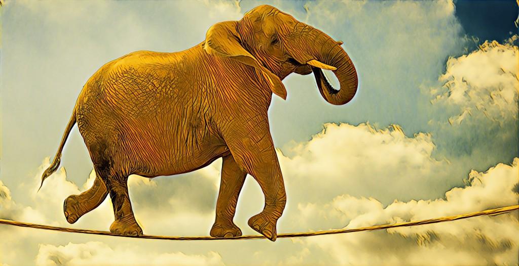 Agile Elephant
