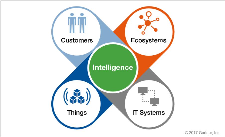 the ecosystem is the digital platform david yockelson