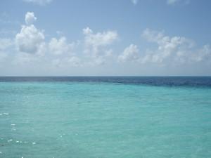 2010 The Maldives - Biyadhoo 002