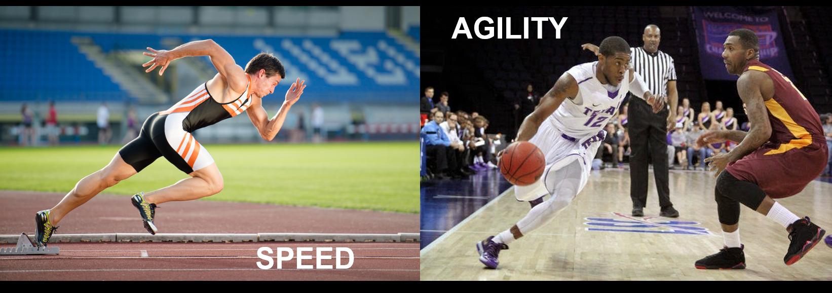 Speed vs Agility