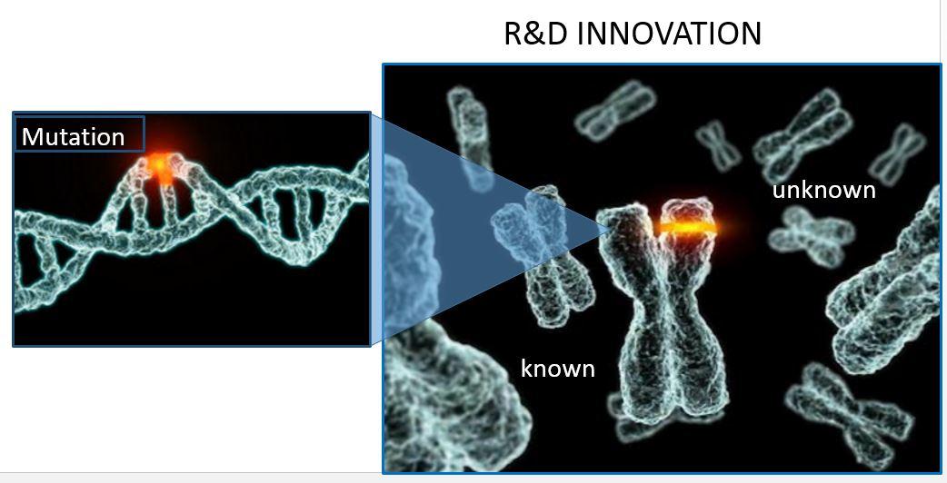 Mutation Innovation