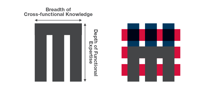 Infographic visualizing how cross-functional knowledge and depth of functional experience fit into a matrix organization.